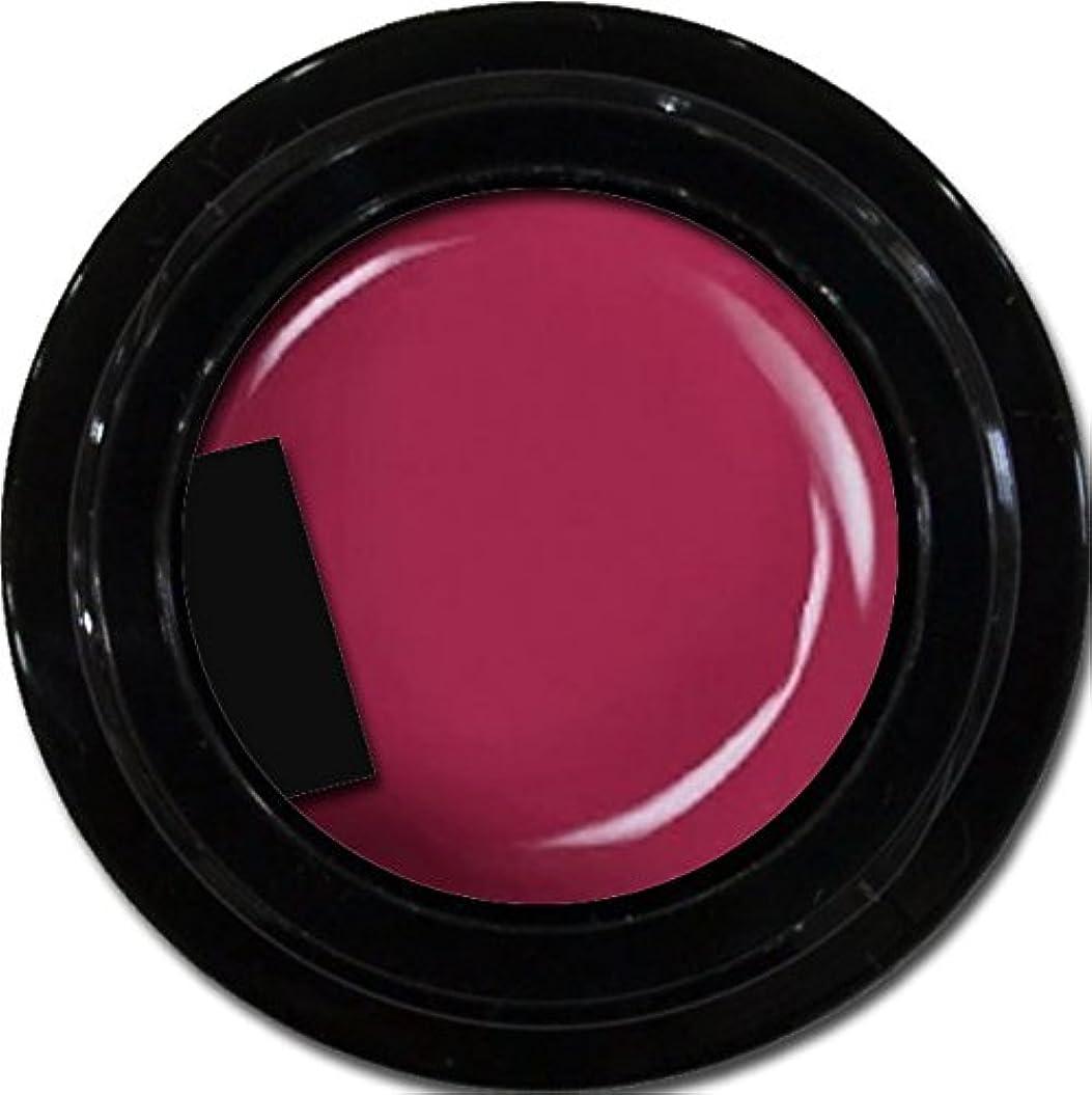ステージ安定した媒染剤カラージェル enchant color gel M510 PinkPurple 3g/ マットカラージェル M510 ピンクパープル 3グラム