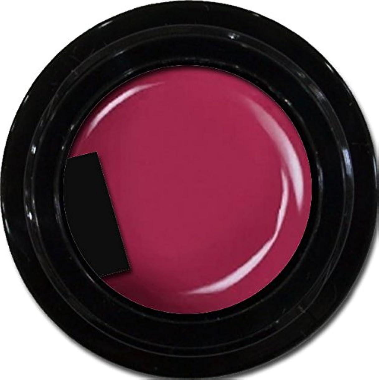 留め金同等の三カラージェル enchant color gel M510 PinkPurple 3g/ マットカラージェル M510 ピンクパープル 3グラム