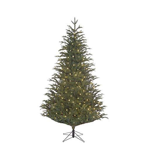 Black Box Trees Frasier Sapin de Noël LED 408L Tips 2688-h215xd145 cm PVC/P Vert