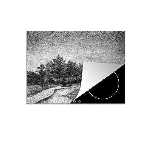 Luxe inductie beschermer Vincent van Gogh (Zwart Wit) - 70x52 cm - GEen idee - afdekplaat voor kookplaat - 3mm dik inductie bescherming - inductiebeschermer