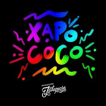 Xapo Coco