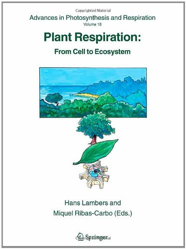 Plant Respiration: From Cell to Ecosystem (Advances in Photosynthesis and Respiration Book 18) (English Edition)