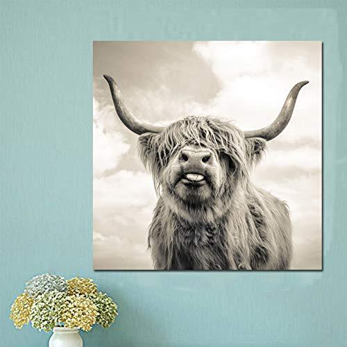 ZWBBO Leinwandgemälde Dekorative Gemälde Schwarz-Weiß Hochland-Kuh Rind Wandbild Leinwand Kunst Nordic Gemälde Poster und Druck Wandbild für Wohnzimmer, 60x60cm(24x24inch)