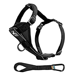 Kurgo Tru-Fit Smart Dog Harness