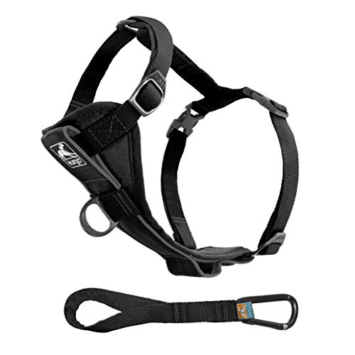 Kurgo Dog Harness | Pet Walking Harness | Extra Large | Black | No Pull Harness Front Clip Feature for Training Included | Car Seat Belt | Tru-Fit Quick Release Style