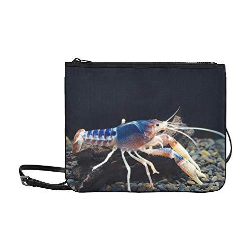 WYYWCY Eine niedliche kleine Regenbogen-Krabben-Muster-Gewohnheit hochwertige Nylon-dünne Handtasche Umhängetasche Umhängetasche