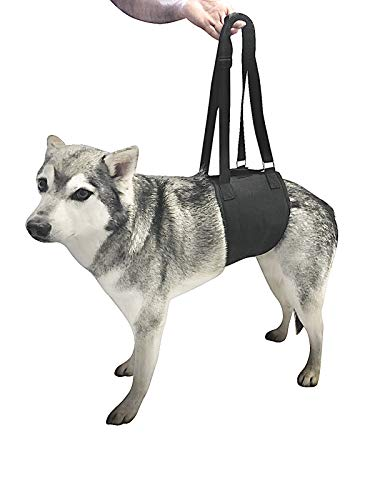 Canine Dog Sling Carrier Support Back Legs Hip Knee Hock Joint Harness to Help Lift Dogs Rear Aid and Old K9 Cruciate (Medium, Black)