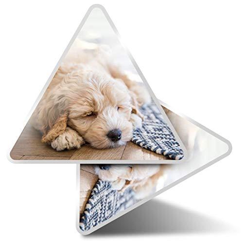 2 pegatinas triangulares de 7,5 cm – Crema Labradoodle Perro Dormir Divertidas Calcomanías para Portátiles, Tabletas, Equipaje, Reserva de Chatarra, Frigoríficos #44740