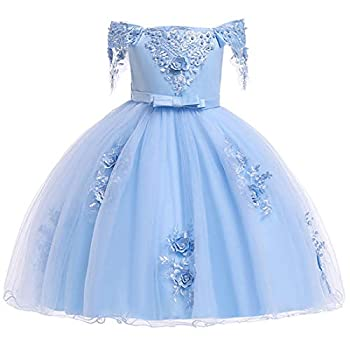 Dresses for Girls 4T Light Blue Wedding Party Lace Dress 3-5 Years Formal Easter Tutu Dresses Sleeveless Flower Ball Gown Knee Length Size 3 4 Children Cute Father Daughter Dance Dress  Blue 110
