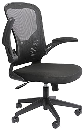 Requena Ergonomic Desk Chair, Mesh Chair with Flip-up Armrest & Lumbar Support, Computer Office Chair with Back Support, Adjustable Height BOC116 (Black)