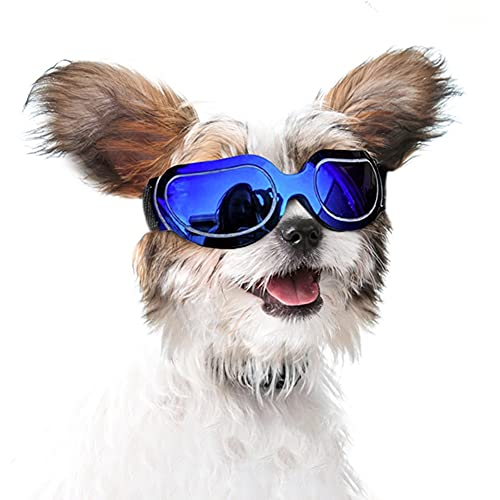 JJunLiM Dog Goggles - Small to Medium Breed Dog Sunglasses Waterproof Windproof UV Protection for Doggy Puppy Cat