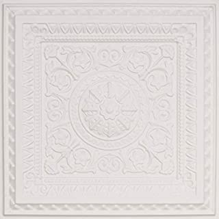 From Plain To Beautiful In Hours 223wm-24x24 Ceiling Tile, White Matte