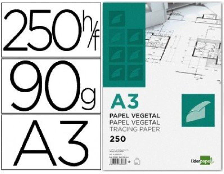 Liderpapel – Papier Zeichnung 297 x 420 mm 90 g m2 Pflanzen (250 Stück) B00YVPH0HQ  | Hohe Sicherheit