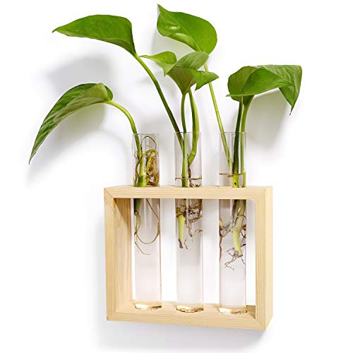 Mkono Wall Hanging Glass Planter Plant Terrarium Modern Flower Bud Vase in Wood Stand Rack Tabletop Terrarium for Propagating Hydropoinc Plants, Home Office Decoration with 3 Test Tube, Small, Beige