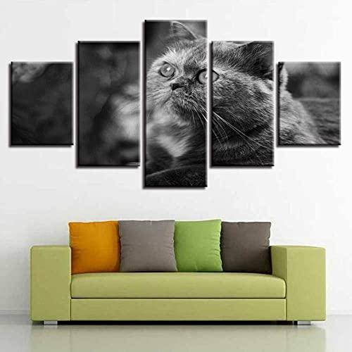 FBDBGRF pittura su tela pittura HD astratto moderno micro spray decorazione domestica tela pittura ad olio appeso pittura grigio gatto gatto animale domestico gatto