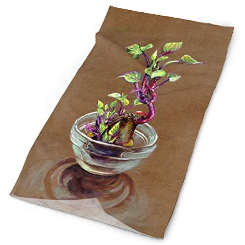 Dulce de la planta de la olla de la patata unisex de la moda de secado rápido de la microfibra tocado al aire libre mágica bufanda del cuello bufanda con capucha bufanda super suave