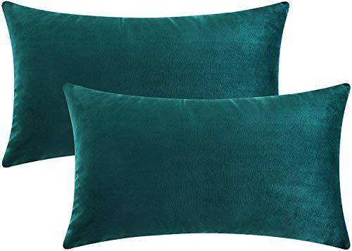 NCKLY Samt-Kissenbezug, 2 Stück, türkis, Kissenbezüge für Bettwäsche und Sofa, Schlafzimmer, weiche Kissenbezüge mit unsichtbarem Reißverschluss, 40 cm x 60 cm