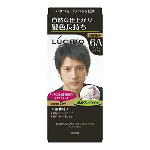 ルシードワンプッシュケアカラーアッシュブラウン1剤50g・2剤50g(医薬部外品)