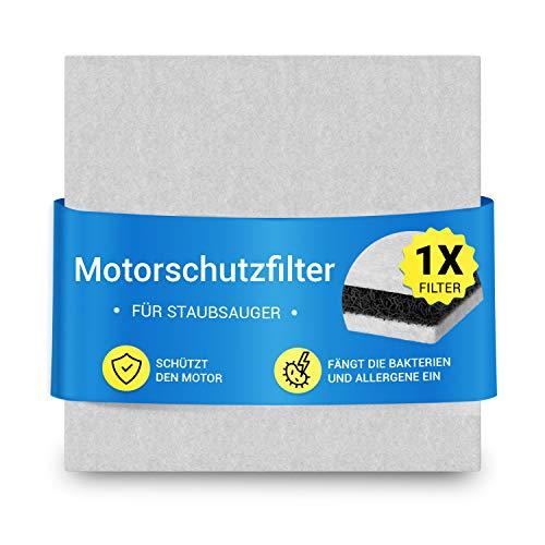 Filtro de entrada Hepa, filtro de protección del motor, filtro sándwich para aspiradora Philips, 3 capas, repuesto para 482248010228 CP9260/01, 1 unidad