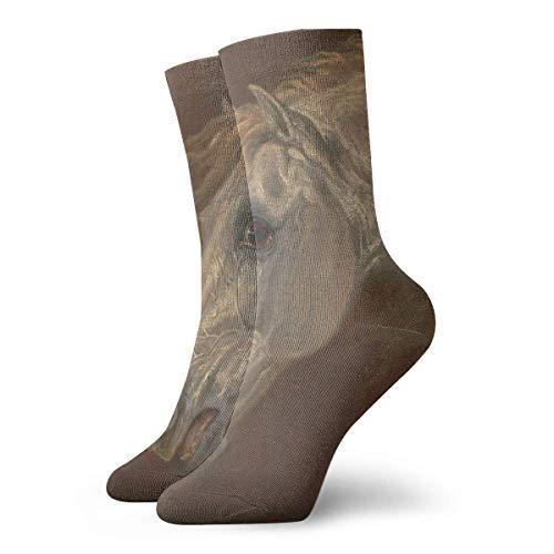 Kevin-Shop De olieverfschilderij-kop-compressiekousen Fun Casual Crew-sokken, dunne sokken, korte enkels voor outdoor, atletische moisture wikkeling