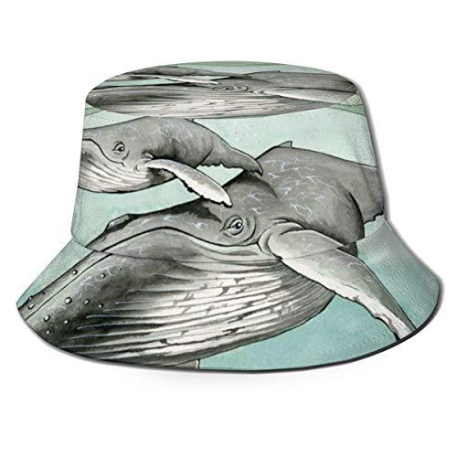 Sombrero de Cubo Transpirable de Parte Superior Plana Unisex Ballenas jorobadas Sombrero de Cubo Sombrero de Pescador de Verano