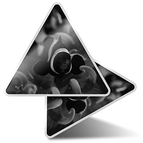 2 pegatinas triangulares de 7,5 cm – BW – Onyx Clownfish Tropical Arrecife Calcomanías divertidas para portátiles, tabletas, equipaje, reserva de chatarra, neveras #39332
