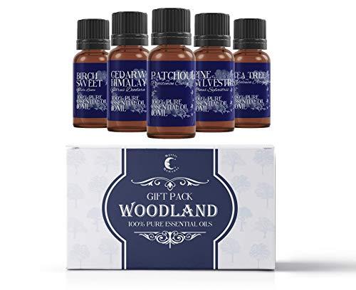 Mystic Moments Ätherische Öle Starterpaket - Woodland Oils - 5 x 10ml - 100% Pur