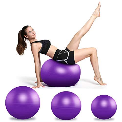 TECHVIDA Ballon Fitness, 55/65 / 75 cm Ballon de Yoga Souple et Flexible pour l'entraînement de la...
