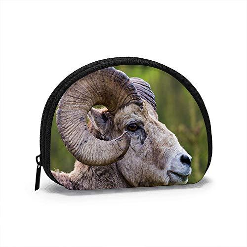 Borrego cimarrón Ovis Canadensis Close Horns Mujeres Adultas Niñas Shell Cosmético Maquillaje Bolsa de Almacenamiento Monedas de Compras al Aire Libre Monedero Organizador