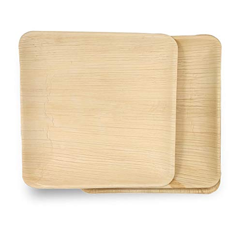 "Dtocs Palm Leaf Plates 10"" Square (Pack 50) 