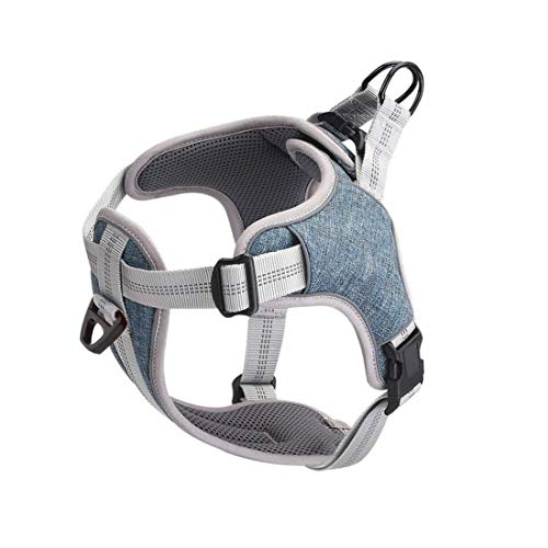 LUOWAN Dog Harness NO Pull, Adjustable Reflective Dog Vest,Easy Control Dog Harness Walking Training Dog Vest with 2 Leash Clips for Small Medium Large Dogs (Large(Dog Bust 24.5''-30.5''), Blue