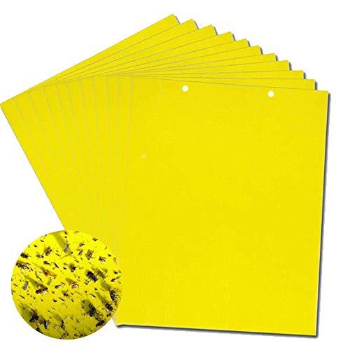 Preisvergleich Produktbild Gelbe klebrige Fliegenfallen,  zweiseitige klebrige Fliegenfänger für Insekten gegen Pilzmücken Weißfliegen Blattläuse Blattminierer usw, 6 x 8 Zoll, 20er-Pack