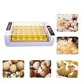 Eierinkubator Inkubator 24 Eier Groß Brutmaschine Vollautomatische Geflügel Brüter Brutzubhalte Automatische Wendung Inkubator Brutapparat für Hühner Enten Gänse Wachteln