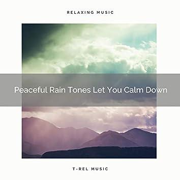 Peaceful Rain Tones Let You Calm Down