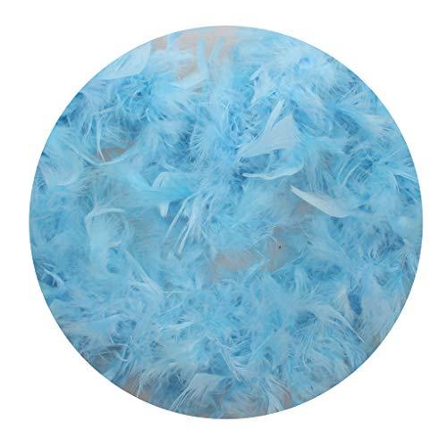 rongweiwang 2 Meter Feder-Entwurfs-Streifen-Kleid-Feder-Boa-Kleidung-Kostüm Boa Dekorationen Hochzeit Dekor Solid Color