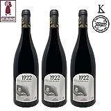 Vin Rouge Kasher Le Pessah 1922 HÉRITAGE - Corbières AOP 2017-75cl - Kosher Hatam Sofer - 3 Bouteilles, élevé en futs de chêne - Maison SARELA