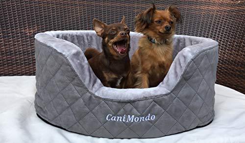 CaniMondo Hundebett Borsetta (M, Grigio grau)