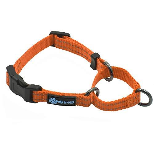 Max and Neo Hundehalsband, Nylon, Martingale-Design, für Hundehalsbänder, X SMALL, Orange