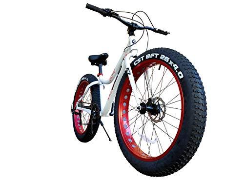 EIZER(アイゼル) ビーチクルーザー 【ファットバイク】迫力の極太タイヤ Wディスクブレーキ 軽量アルミフレーム Shimano7段変速 26インチ26x4.1 スノーバイク FATBIKE TENUS7 テナス7 ホワイト