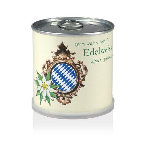 MacFlowers Blumen in der Dose - Edelweiss Bavaria