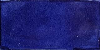 Fine Crafts Imports 3x6 9 pcs Cobalt Blue Subway Talavera Tile