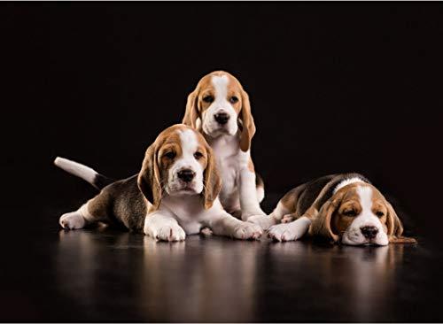 Premium Woodmade Puzzle Beagle Puppy 3D Rompecabezas Clásico De Madera Diy Decoración Para El Hogar Regalo 1000 Piezas