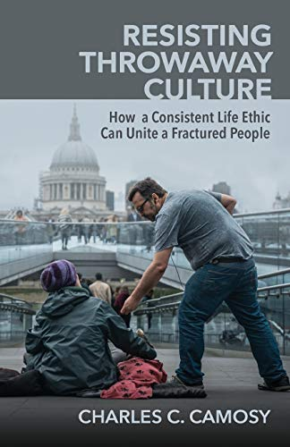 Image of Resisting Throwaway Culture: How a Consistent Life Ethic Can Unite a Fractured People