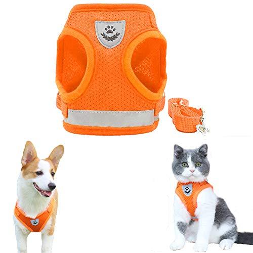 FeiLuo Hundegeschirr und Leinen Set für Hunde, Weich Mesh Gepolstert Geschirr für Welpen und Katzen, Reflektierende Verstellbare Atmungsaktive Brustgeschirr für Gehen, Laufen, Training (L, Orange)