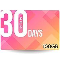 プリペイドSIMカード 30日100GBプラン[Mプラン] 期間内使い切りプラン