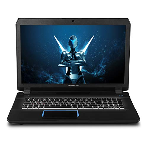Medion Erazer X7843 43,9 cm (17,3 Zoll mattes Full HD Display) Gaming Notebook (Intel Core i7-6820HK, 16GB DDR4 RAM, 1TB HDD, 256GB SSD, Nvidia GeForce GTX 980M 4GB GDDR5, Win 10 Home)