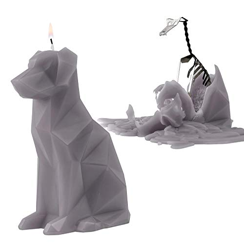 PyroPet Animal Shaped Skeleton Candles by 54 Celsius (Voffi, Grey)