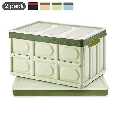Homde Collapsible Storage Bins with Lid 2 Pack Crates Plastic Tote Storage Box Container (Green, Large)