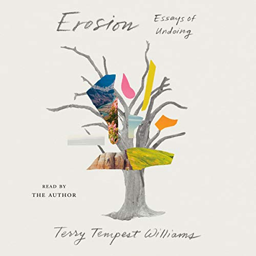 Erosion Audiobook By Terry Tempest Williams cover art