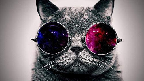 Radiancy Inc Gafas de sol de gato con pintura digital para niños principiantes y adultos, decoración para el hogar